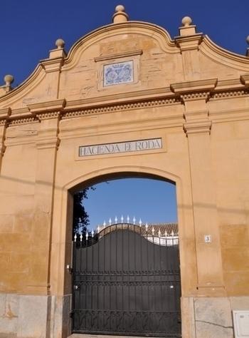 Roda San Javier