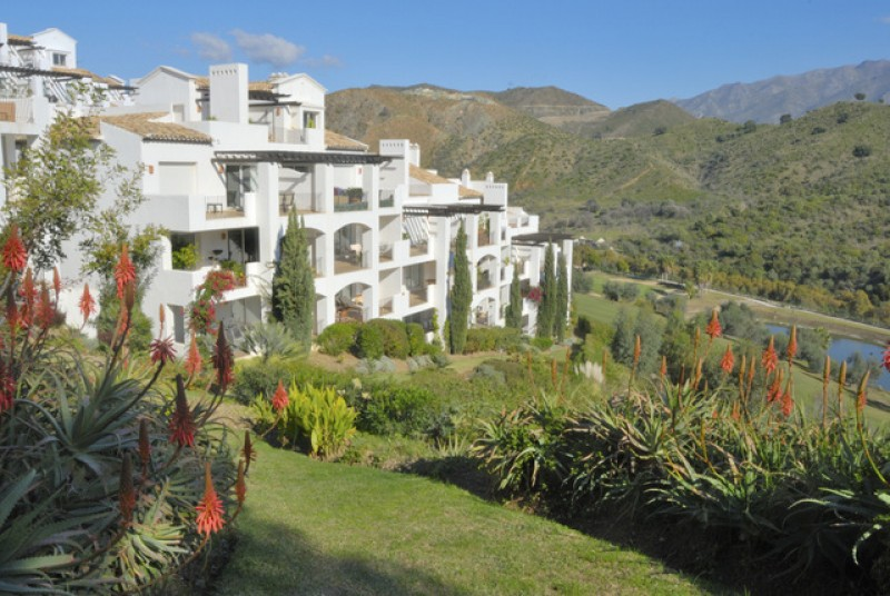 <span style='color:#780948'>ARCHIVED</span> - British property buyers returning to Murcia and the rest of Spain