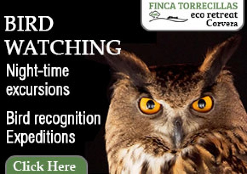 Eco-Finca Torrecillas offers birdwatching, and wildlife discovery experiences in the Murcia countryside