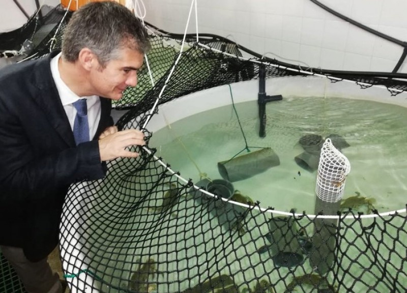 <span style='color:#780948'>ARCHIVED</span> - New fish farming facility to be created off the coastline of Lorca