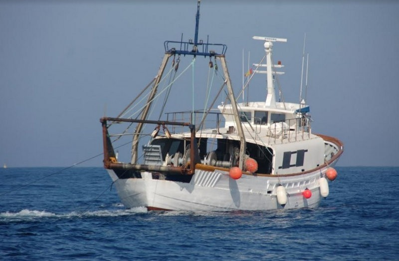 <span style='color:#780948'>ARCHIVED</span> - Tuna and swordfish prices soar in Cartagena due to reduction in fishing fleet