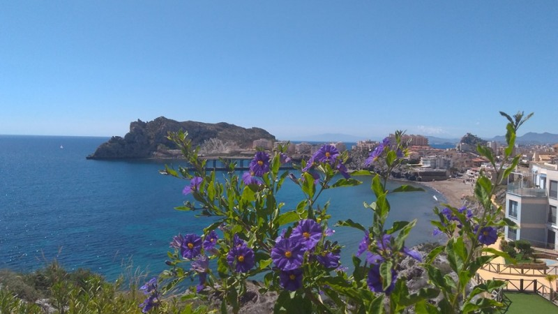 <span style='color:#780948'>ARCHIVED</span> - What's on in Águilas during May