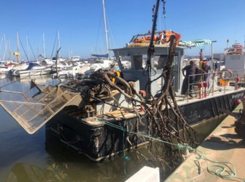 <span style='color:#780948'>ARCHIVED</span> - Mar Menor clean-up goes on after Gota Fría flooding