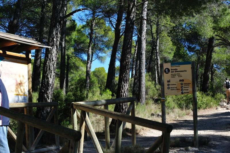The PR-MU 41 walking route in Sierra Espuña, the Senda de los Siete Hermanos