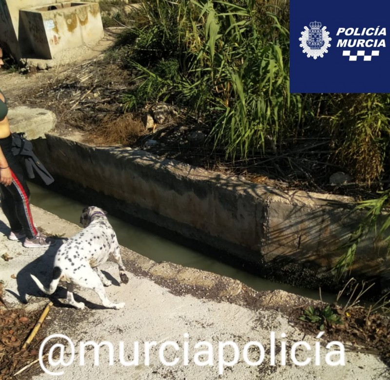 <span style='color:#780948'>ARCHIVED</span> - Woman almost drowned saving her dog from irrigation channel in Murcia