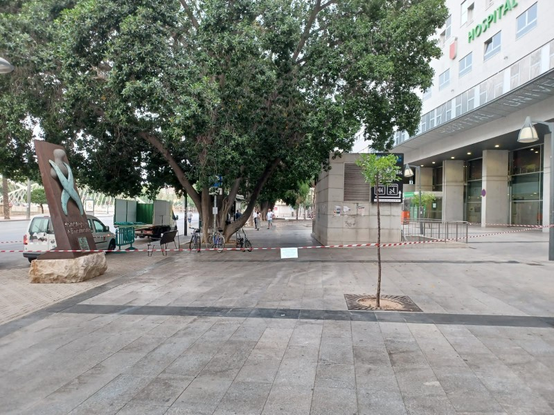 <span style='color:#780948'>ARCHIVED</span> - Murcia City Council closes parks over fears of falling tree branches