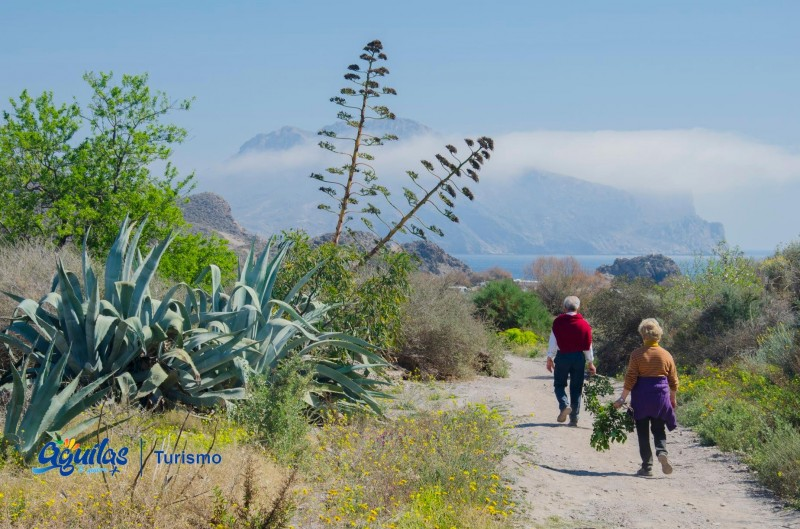 <span style='color:#780948'>ARCHIVED</span> - Free guided tours of Aguilas during September