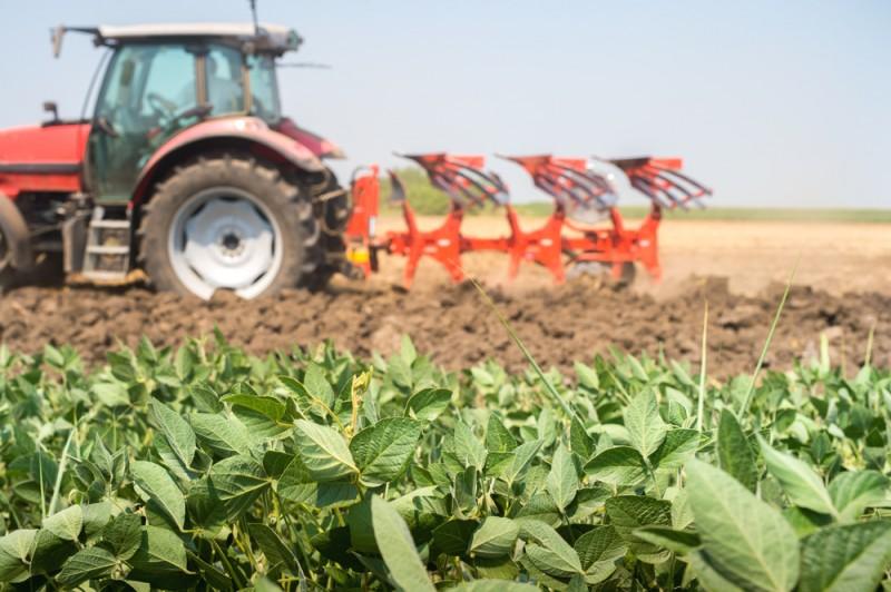 <span style='color:#780948'>ARCHIVED</span> - UK postpones strict custom rules for EU food produce until July