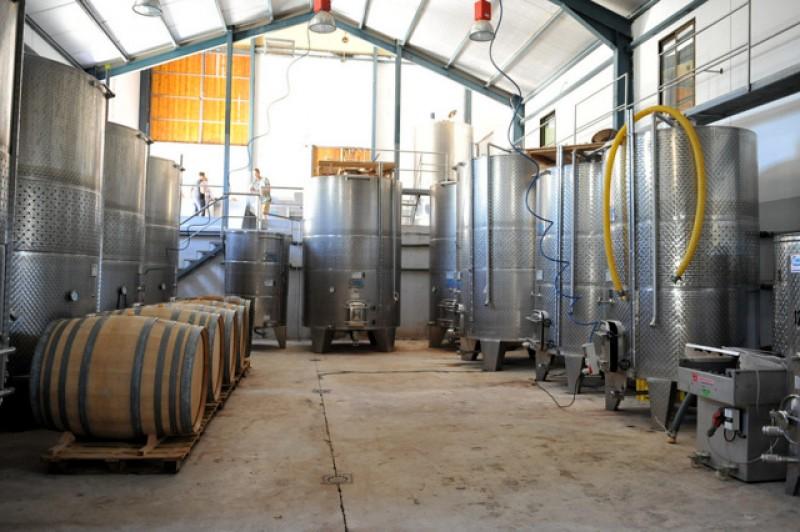 Bullas Wine Route: Bodega Balcona