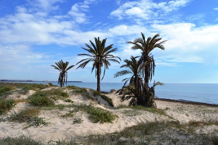 Overview of the beaches of San Pedro del Pinatar