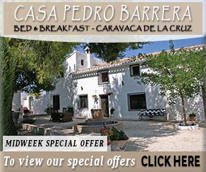 Hotel Casa Pedro Berrera
