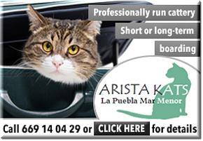 Aristakats banner